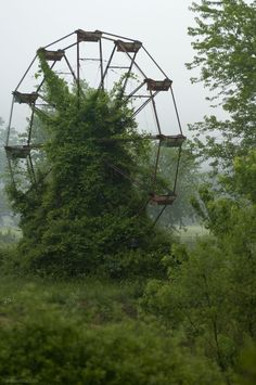 An abandoned ferris wheel at The Lake Shawnee amusement park in Princeton, WV! abandoned and haunted theme park where many had died. Vanitas, Abandoned Buildings, Abandoned Places, Haunted Places, Scary Places, Dame Nature, Nature Nature, Beauty Of Nature, Man Vs Nature