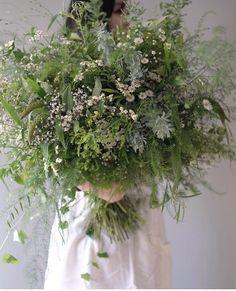 Growing Flowers, Cut Flowers, Colorful Flowers, Planting Flowers, Vertical Garden Plants, Bouquet, Flower Studio, Language Of Flowers, Happy Flowers