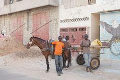 Senegal, The Telegraph