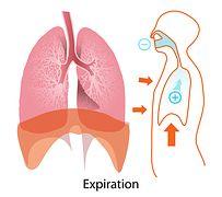 KREATIVNE IDEJE: Evo kako upala pluća može da se izleči za tri sata...