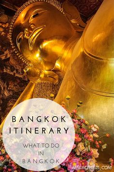 Heading to Bangkok? Check out this guide on what to do and see in Bangkok!