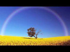 [1 Hour] Healing Tambura - Solar Plexus Chakra Meditation Music | Taanpura Sounds - YouTube