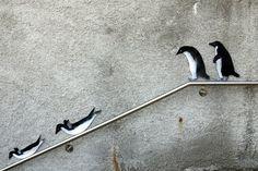 street animals | Raphael Gabriel Keller                                                                                                                                                      More