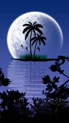 Nature is All Around Beautiful Nature Pictures, Beautiful Moon, Amazing Nature, Amazing Art, Beautiful Landscape Wallpaper, Beautiful Landscapes, Blue Moon Tattoo, Ocean At Night, Moon Pictures