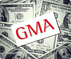 Breaking news: In the battle over GMO labeling bill I-522 in Washington, the Grocery Manufacturers Association has just been caught running a money laundering slush fund that funneled over $7 million into the campaign while illegally concealing the identities of the donors. Mafia-style tactics are routinely used by the biotech industry to cheat, steal or influence ballot measures. http://www.naturalnews.com/042546_Grocery_Manufacturers_Association_GMO_labeling_money_laundering.html
