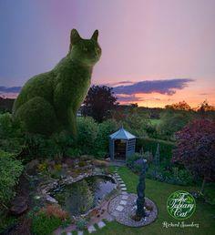 きれいなお庭とスヤスヤ眠る猫。それ自体はよく見かける光景ですが、なにやらサイズ感がおかしい…。よくよく見ると猫の形に刈られた木のようですが…毛並みや表...