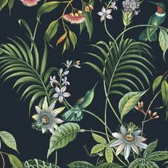 An enchanting tropical design featuring vibrant flowers and birds on a contrasting dark blue background. Tropical Wallpaper, Botanical Wallpaper, Bird Wallpaper, Wallpaper Online, White Wallpaper, Wallpaper Samples, Paradise Wallpaper, Dark Blue Background, Tropical Design