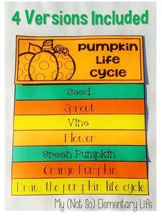 Pumpkin Life Cycle Flip-Flap book