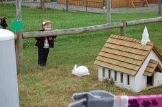 Image result for bunnyville Park, Image, Parks