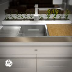 Using grey water recycled from all over your house, Home 2025 lets you grow fresh produce in your kitchen.