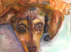 9x12 Dachshund Puppy Dog Watercolor Painting Pet Portrait Art Penny Lee StewArt #Realism