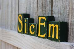 Sic Em blocks