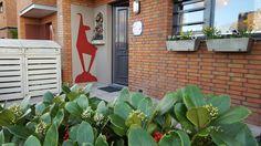 Unsere Stammgäste haben die Gams bei sich zu Hause :-) Outdoor Structures, Plants, Plant, Planets