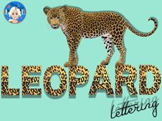 Glitter Letters, Leopard Animal, Alphabet And Numbers, Craft Activities, Print Letters, 26 Letters, Etsy Store, Banners, Have Fun