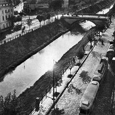 Bucharest Romania, Public Transport, Railroad Tracks, Transportation, Memories, Cartier, Facebook, Romania, Park