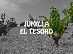 JUMILLA, ENVERO WINES, VINOS DE JUMILLA