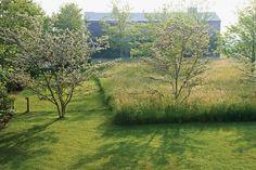 Visible   Invisible: Landscape Works of Reed Hilderbrand: Robert Harrison, Peter Walker, Douglas Reed, Gary Hilderbrand: 9781938922138: Amaz...