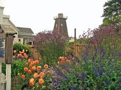 Garden and water tower in at MacCallum House Inn, Mendocino, California by LoveToTravelGal