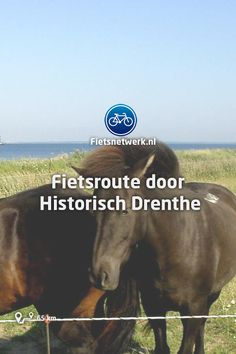 Een route met oude dorpen vol geschiedenis, de Drentsche Aa en esdorpen.  #Drenthe #historie #dorpen Netherlands, Holland, Maps, Beautiful Places, Hiking, Camping, Bike, Workout, Travel