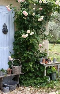 a touch of yard decor added to enhance running roses