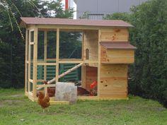 poulailler en bois - Gallinette.net pour le bien être de nos poulettes