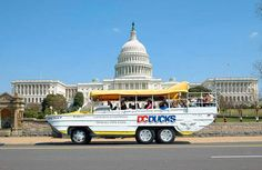 8 Cheap and Awesome Things to Do with Kids in DC | Fodor's