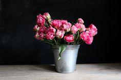 Plnokvětý tulipán sladce růžové barvy připomínající cukrovou vatu. Středy květu světlají do bíla a skvěle se hodí na svatební floristiku. Belle Epoque, Vase, Home Decor, Decoration Home, Room Decor, Vases, Home Interior Design, Home Decoration, Interior Design