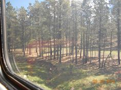On train to Grand Canyon