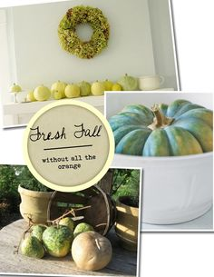 Love the white/green pumpkins