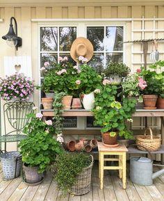 Rustic Gardens, Farm Gardens, Outdoor Gardens, Garden Deco, Garden Pots, Old Garden Gates, Shabby Chic Garden, Growing Flowers, Dream Garden