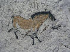 라스코 동굴벽화 - Google 검색