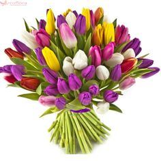 """Tulips and What Flowers Mean - """"Pink tulips represent caring, while purple mean royalty, as with purple roses. Red tulips mean love, white forgiveness, and yellow ones tell the recipient that you're head over heels for them. Ikebana Flower Arrangement, Flower Arrangements, Flower Meanings, Anemone Flower, Yellow Tulips, Japanese Flowers, Flowers Online, Purple Roses, Mugs"""