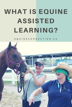 Here at Equine Connection we are dedicated professionals to assisting you in your powerful journey of Equine-Assisted Learning. Small classes so book your spot now! #equineconnection @ealacademy