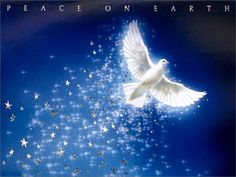 Christmas Dove Peace on Earth Christmas Wallpaper Peaceful Backgrounds, Blue Backgrounds, Jesus Wallpaper, Star Wallpaper, Butterfly Wallpaper, Peace On Earth, World Peace, Swans, Social Networks