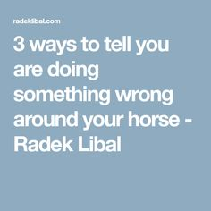 3 ways to tell you are doing something wrong around your horse - Radek Libal