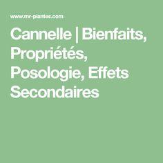 Cannelle   Bienfaits, Propriétés, Posologie, Effets Secondaires
