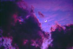 New post on violetvio