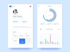 Project Management System Ui design data and statistics