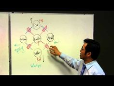 Acupuncture Canberra - The 5 Elements of Chinese Medicine by Matt Dippl - YouTube