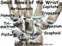 21 Best ORTHOfilms images in 2015 | Bone fracture, Sports