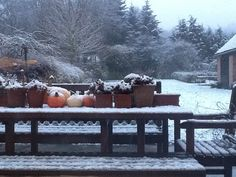 Snow is falling .