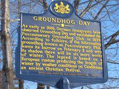 Ground hog day tradition