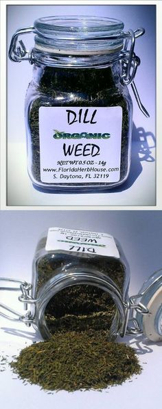 Dill Weed 0.5 oz. (14g) - Organic Eco Friendly Gifts! - Eco-Spices!