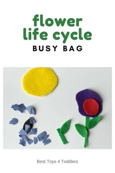 Learn about flower life cycle with an easy to prepare usy bag Preschool Learning Activities, Spring Activities, Stem Activities, Infant Activities, Preschool Ideas, Toddler Play, Toddler Preschool, Green Craft, Busy Bags