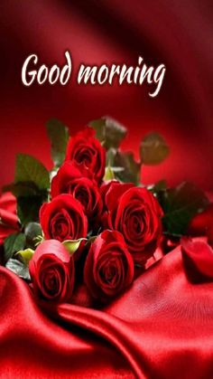 Red Rose Love good morning , Free Red Rose Good morning photo wallpaper pics For Whatsaap , Red Rose Good Morning Pictures for Girlfriends Love Couple , Red Rose Good Morning Pics For Wife . Good Morning Kiss Images, Good Morning Romantic, Good Morning Nature, Good Morning Images Flowers, Good Morning Roses, Good Morning Gif, Morning Pictures, Good Morning Images Download, Morning Msg