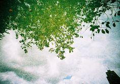 on Flickr