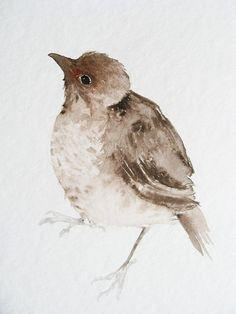 Young Bird  Original Watercolor Painting by dearpumpernickel, $68.00