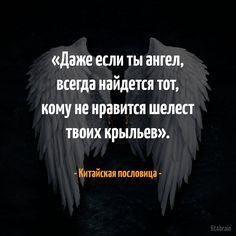 15672644_1317475201646418_222828090995611873_n.png (650×650)