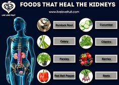 Natural remedies for Kidney health :    Spirulina, Wheat Grass and Chlorophyll nourishes and tones the kidneys and increases the amounts of waste removed via filtration, it is also a blood cleanser and alkaliser     Herbs to improve the functioning of the kidneys are Borage, Chapparal, Cornsilk, Dandelion leaf, Goji Berry, Alisma, Poria, Ginkgo biloba, Green Tea, Lemon Grass (tea), Milk Thistle, Rehmannia, Parsley, Celery, Juniper, Roship (tea), Sarsaparilla, Bearberry and Golden Seal
