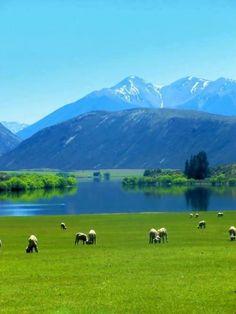 Lake Pearson, New Zeland